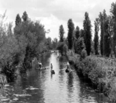 Hombres en canoas reman en un canal de Xochimilco