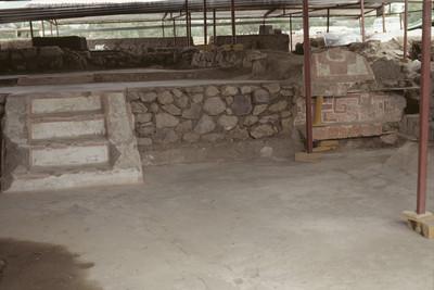 Caracoles seccionados, diseño de entrelaces y conchas