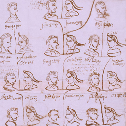 Genealogías de los señores de Etla