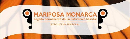 Mariposa monarca. Legado permanente de un Patrimonio Mundial