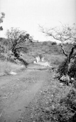 Hombres utilizan pico para excavar sitio arqueológico de Xochicalco