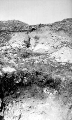 Vista general de una cala de excavación