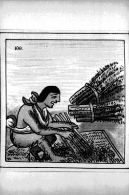 Lámina del Códice Florentino que muestra un oficio, reprografía