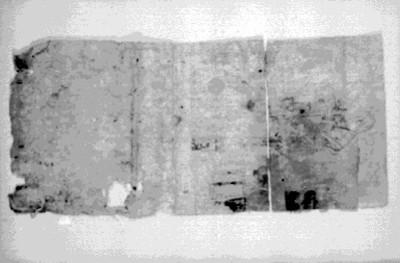 Vista de Códice prehispánico