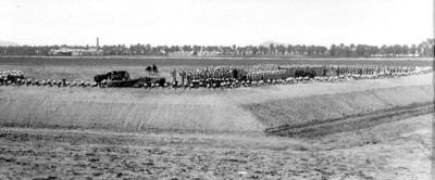 Contingentes de soldados armados detrás de una trinchera