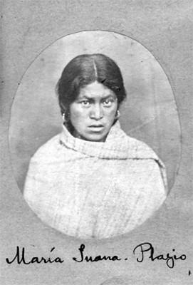María Juana. Plagio