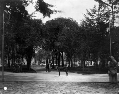 """""""Parque de los Cedros"""" en Chalchicomula, Puebla"""