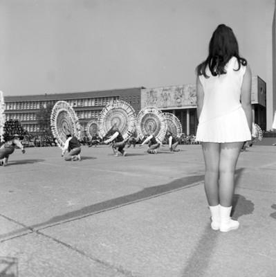 Danzantes realizan baile regional durante ceremonia en Escuela Normal