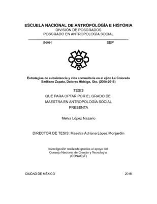 Estrategias de subsistencia y vida comunitaria en el ejido La Colorada Emiliano Zapata, Dolores Hidalgo. Gto. (2005-2016)