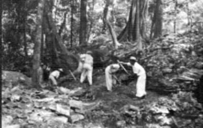 Hombres realizan trabajos de excavación en Palenque