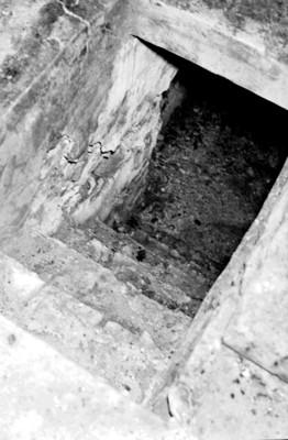 Vista de la entrada a la cripta de Pakal