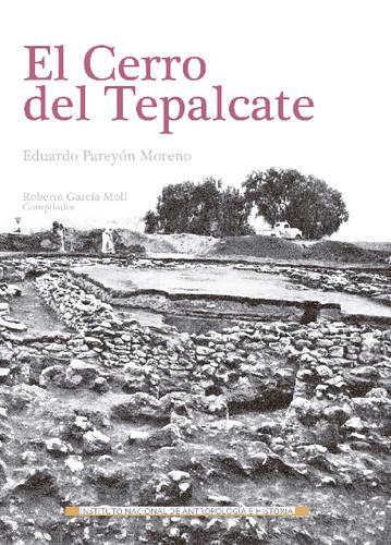 El Cerro del Tepalcate